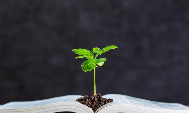Educação ambiental será tema de debate entre professores e estudantes em Niterói
