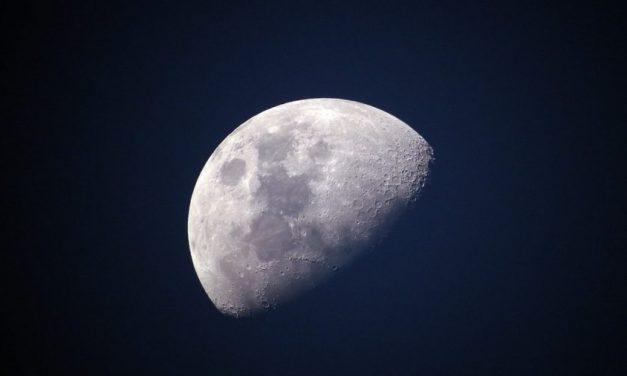 A lua e o jacaré – por Marco Orsini