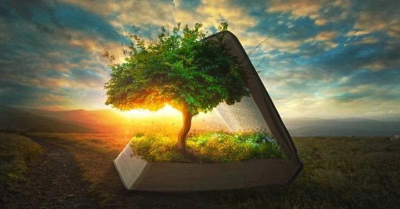 Árvore da vida – por Marco Orsini